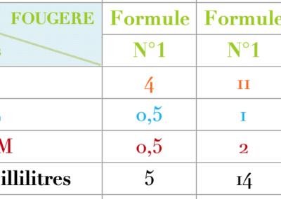 Formule Fougere Fraiche
