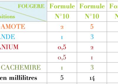 Formule Fougere Irisée