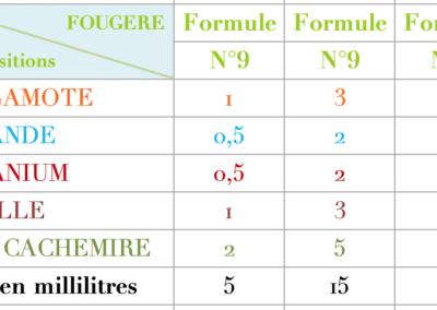 Formule Fougere classique 2