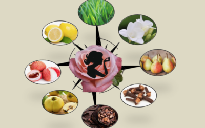 Create your perfumes with Rose, the possibilities are endless…